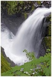 Basisch water uit de natuur